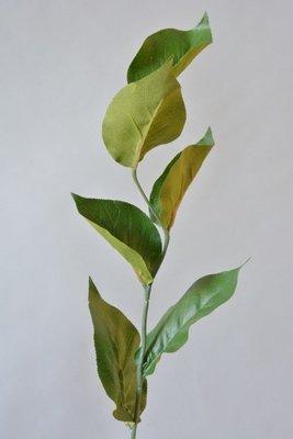 Appel blad, 60cm