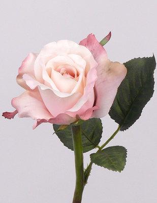 Roos Vintage - Roze