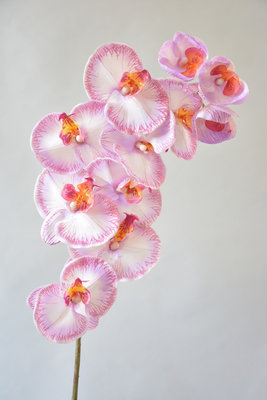 Orchidee roze, 101CM