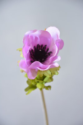 Anemoon 30cm, lila