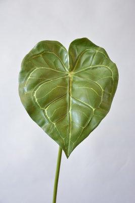 Groen Blad, 70cm