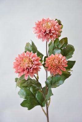 Chrysant 56cm, roze