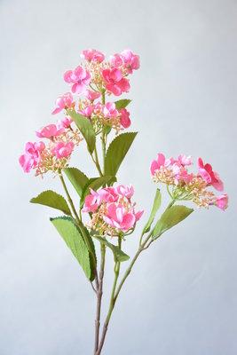 Hortensia, 74cm roze