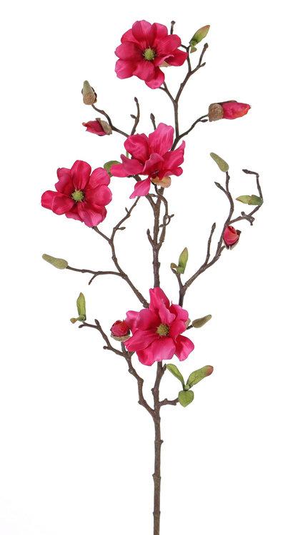 12x Magnoliatak fijn