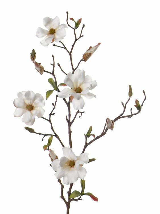 12x Magnolia 75cm 4 flowers (Ø 7- 8 cm)