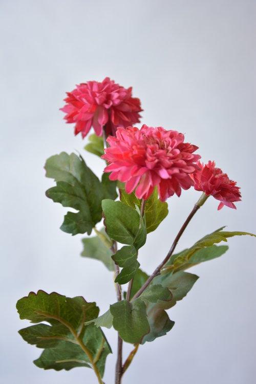 Chrysant 56cm, donker roze