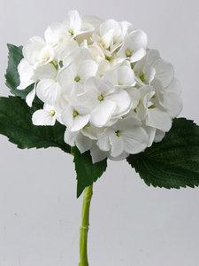 Hortensia 48cm, wit
