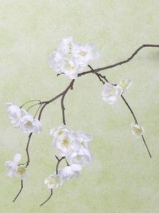 Kersenbloesemtak 91cm, wit