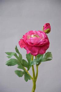Ranonkel, 33cm, Fuchsia