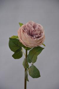 Roos Lila, 47cm