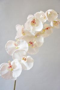 orchidee kunstbloem