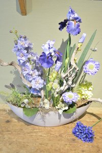 Blauw-paars bloemenweelde